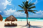 pic of caribbean  - Beautiful tropical white sand beach and Caribbean sea in Tulum Mexico - JPG