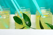 Fresh Lemonade With Lemon Poured Into Glasses.