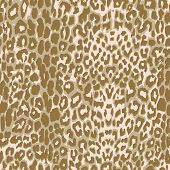 stock photo of leopard  - seamless beige leopard print - JPG