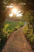 Illuminated Path In Rural Landscape