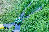 pic of grass-cutter  - Scissors cut grass put in garden during cut  - JPG
