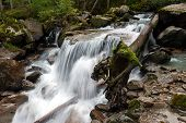 stock photo of genova  - Lares Waterfalls in Genova valley Natural Park Adamello Brenta Italy