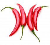 image of cayenne pepper  - red chili or chilli cayenne pepper isolated on white  background cutout - JPG