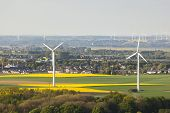 pic of rape-seed  - Flat west German landscape near Aachen and Herzogenrath with wind turbines and yellow rape fields - JPG