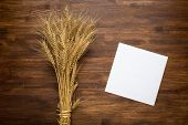 foto of spike  - Wheat spikes on dark wooden board with paper - JPG