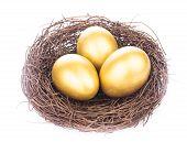 foto of priceless  - Three golden eggs in the nest isolated on white - JPG