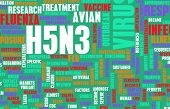 image of avian flu  - H5N3 Concept as a Medical Research Topic - JPG