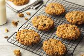 image of baked raisin cookies  - Homemade Oatmeal Raisin Cookies Ready to Eat - JPG