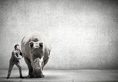 stock photo of rhino  - Businessman making effort to move big rhino - JPG