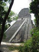 Tikal Pyramid 2