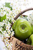 Grüner Apfel mit Blüten in einem Korb auf einem weißen Hintergrund