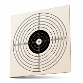 vector 3d paper rifle target