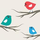 Cute birds on the trees