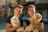 Great Companions. Happy Twins With Muscular Look. Twins Men Hold Pedigree Dogs. Muscular Men With Do poster