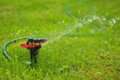 closeup of lawn sprinkler with copy-space
