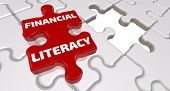 Financial Literacy. The Inscription On The Missing Element Of The Puzzle. Folded White Puzzles Eleme poster