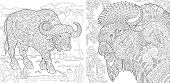 Coloring Pages. Coloring Book For Adults. Colouring Pictures With Buffalo And Bison. Antistress Free poster