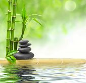 picture of bamboo leaves  - spa concept zen basalt stones - JPG