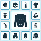Physique Icons Set With Joint, Spine, Back And Other Muscle Elements. Isolated Vector Illustration P poster