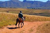 Horse - riding in Lesotho