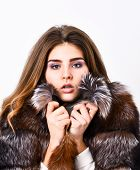 Woman Makeup And Hairstyle Posing Mink Or Sable Fur Coat. Winter Elite Luxury Clothes. Female Brown  poster