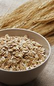 free ears of wheat and wheatgerm in a small bowl