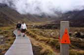 People hiking the Tongariro Crossing in New Zealand