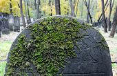 picture of polonia  - Old stone grave at historic Jewish cemetery Okopowa Street in Warsaw Poland - JPG