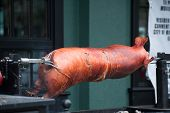 Slow Roasted Pig