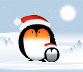 Penguins Christmas