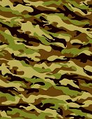 picture of camoflage  - Brown and khaki camouflage pattern with fabric texture - JPG