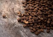picture of coffee coffee plant  - Coffee on grunge wooden background - JPG