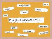 Project Managment Corkboard Word Concept