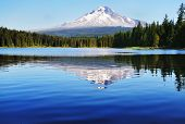 De Mount Hood reflectie in Trillium Lake