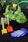 Equipment For Gardening