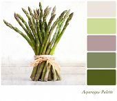 A bundle of asparagus tied with raffia on a vintage style background,  in a colour palette with comp