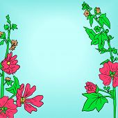 Floral frame with mallow flowers