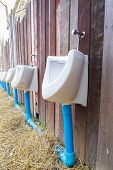 Public toilet on wooden wall