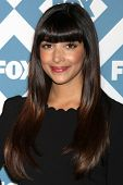 LOS ANGELES - JAN 13:  Hannah Simone at the FOX TCA Winter 2014 Party at Langham Huntington Hotel on