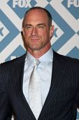 LOS ANGELES - JAN 13:  Chris Meloni at the FOX TCA Winter 2014 Party at Langham Huntington Hotel on