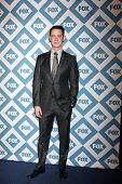 LOS ANGELES - JAN 13:  Colin Hanks at the FOX TCA Winter 2014 Party at Langham Huntington Hotel on January 13, 2014 in Pasadena, CA