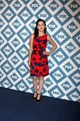 LOS ANGELES - JAN 13:  Shannon Woodward at the FOX TCA Winter 2014 Party at Langham Huntington Hotel