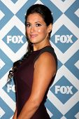 LOS ANGELES - JAN 13:  Angelique Cabral at the FOX TCA Winter 2014 Party at Langham Huntington Hotel