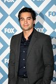 LOS ANGELES - JAN 13:  Ramon Rodriguez at the FOX TCA Winter 2014 Party at Langham Huntington Hotel