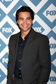 LOS ANGELES - JAN 13:  Ramon Rodriguez at the FOX TCA Winter 2014 Party at Langham Huntington Hotel