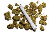 Close Up Of Medicinal Marijuana And A Joint