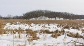 Frozen Marsh And Hills In Winter
