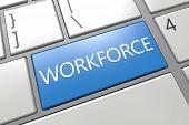Workforce