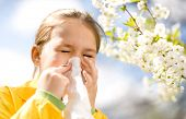 image of blowing nose  - Little girl is blowing her nose near spring tree in bloom - JPG
