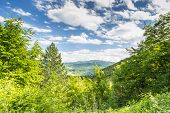 picture of apennines  - Rolling Hills of the Apennine Mountains Piacenza Italy - JPG